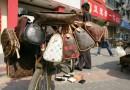 U.S. Customs Intercept $1Million worth of fake Gucci and Louis Vuitton Hand Bags